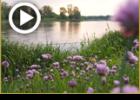 מעשה במעבר נהר הדיניעפר